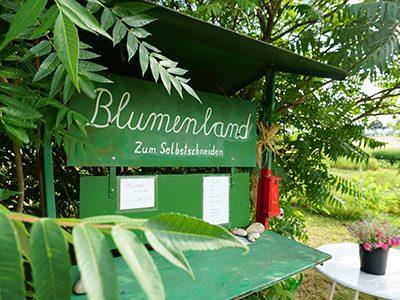 Blumenland1-Ritter-Saatgut